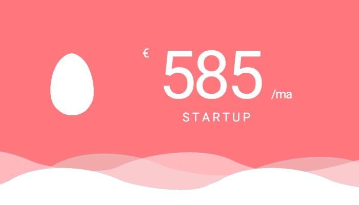 Abonnement onderhoud - Startup