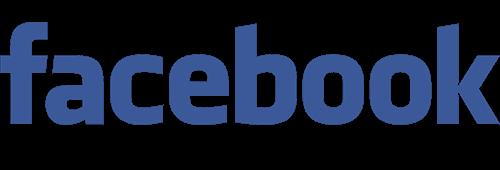 Facebook marketing logo - Digital Dinosaurs