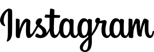 Instagram marketing logo - Digital Dinosaurs